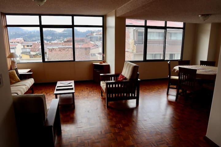 DELIGHTFUL Apartment in El Centro - Fully Restored