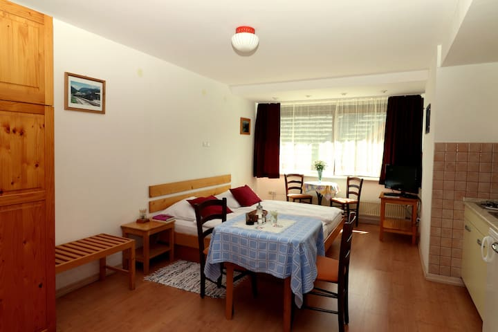 Jager apartments (Apartment-studio for two people)