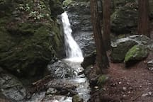 In the winter time you can find streams all around the canyons.
