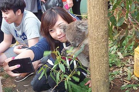 Wombat Cottage: Fauna Australia - Lavers Hill - Srub