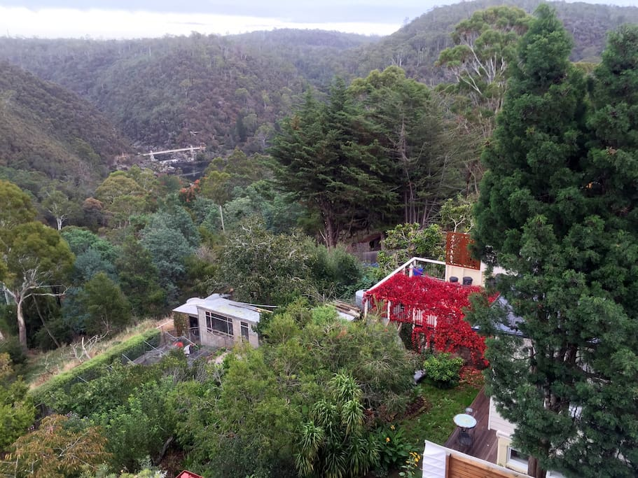 View these sites when staying at Cataract Gorge Cottages