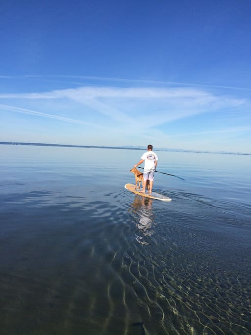 Paddleboarding with my dog