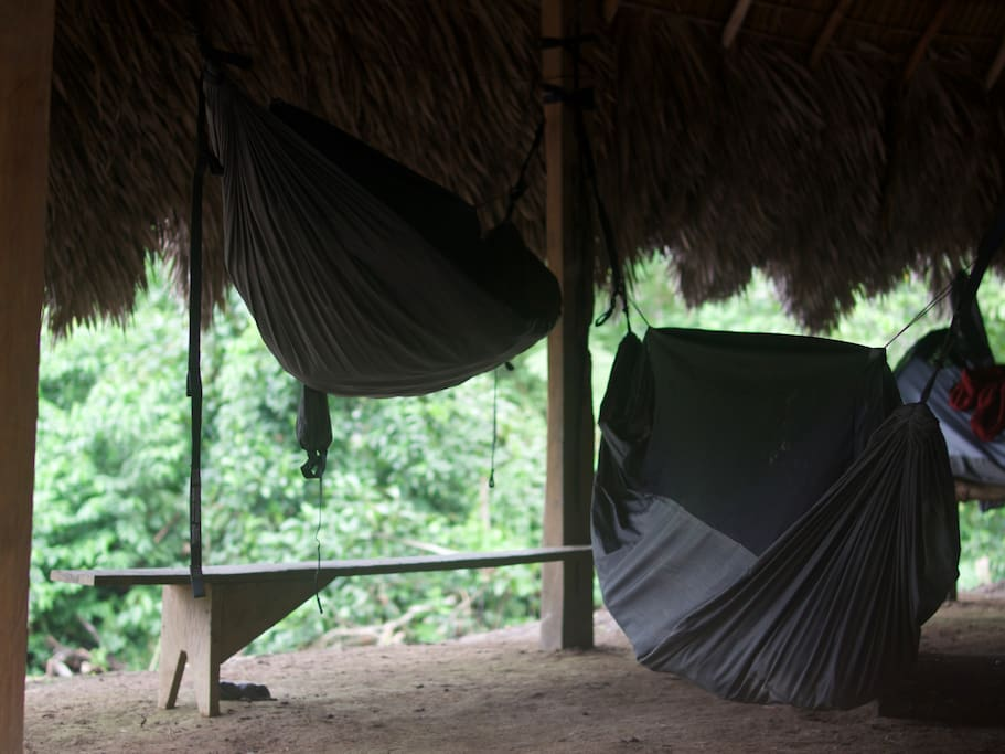 ENO Jungle Nest hammocks with built-in mosquito nets.