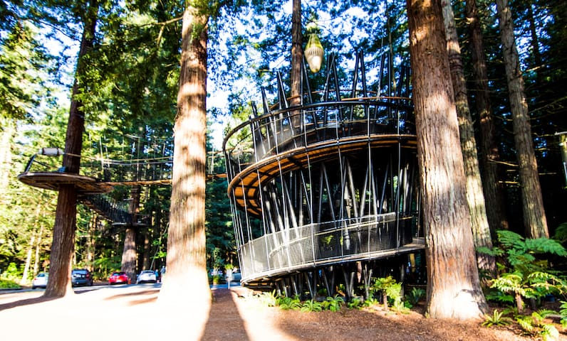 The Redwoods Lodge, Your next Adventure awaits
