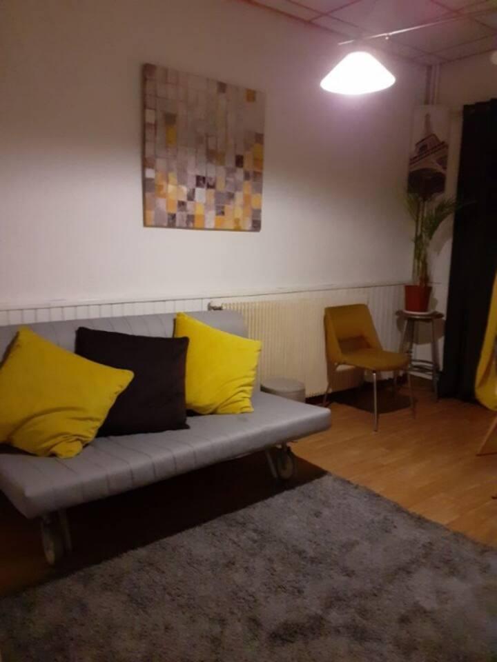 Maisons-Alfort logement entier de type  F1 meublé