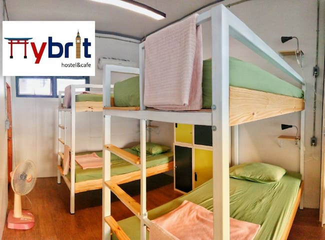Hybrit hostle&cafe - Female dorm 4-beds
