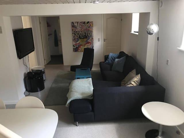 Værelse i midtby, tv stue og egen indgang og bad