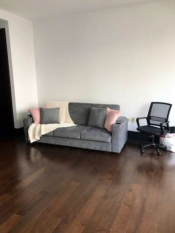 Beautiful Sofa Bed Available in Luxury Condo