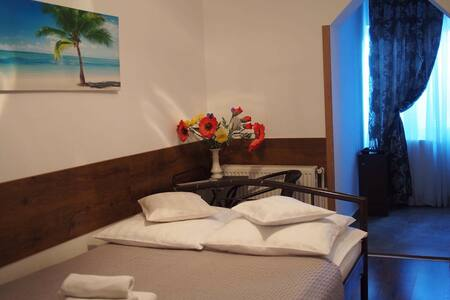 Double room with 1 large bed Room nr.4 - Timișoara