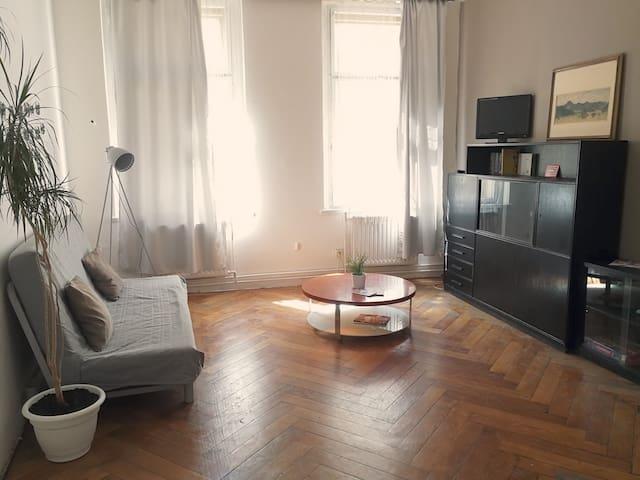 Riverside 2BR with kitchen &1,5 bathroom in Prague