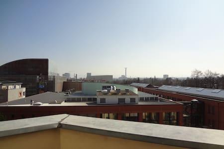 STUDIO 39m2 CENTER ST LOUIS BASEL WORLD IBIS HOTEL - Saint-Louis - Apartemen