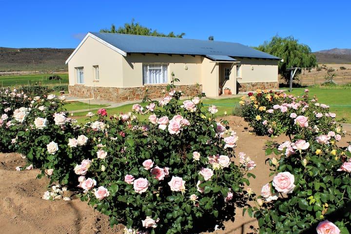 Middelberg Guest Farm