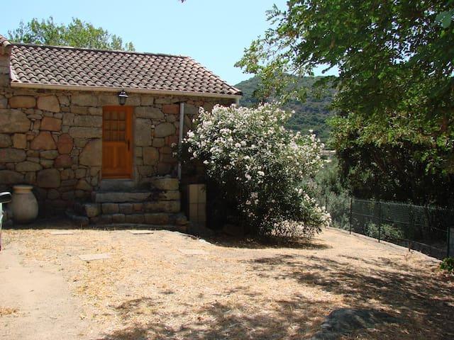 maison de vacances - Figari - Casa