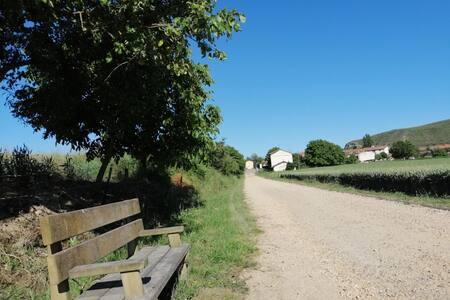 Casa rural con jardín en pleno Camino de Santiago