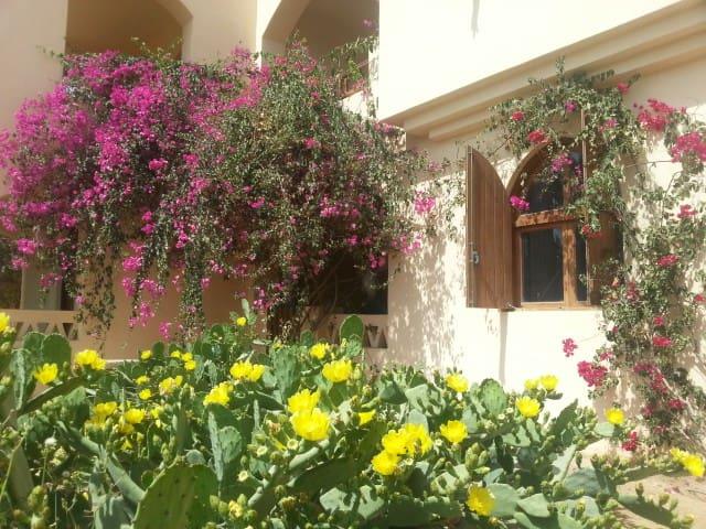 El Gouna privates Zimmer eig. Duschbad und Lagune