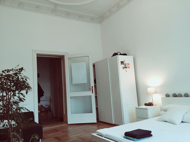 Beautiful room, huge flat, top location (P-Berg) - Berlin - Apartment