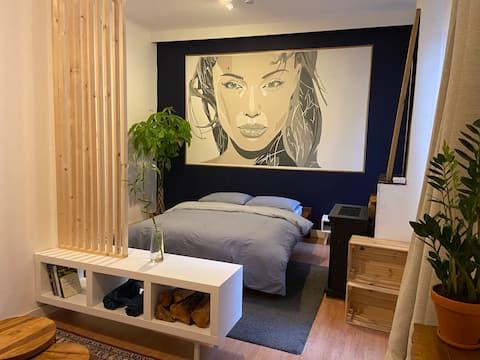 Studio centre de Brussels