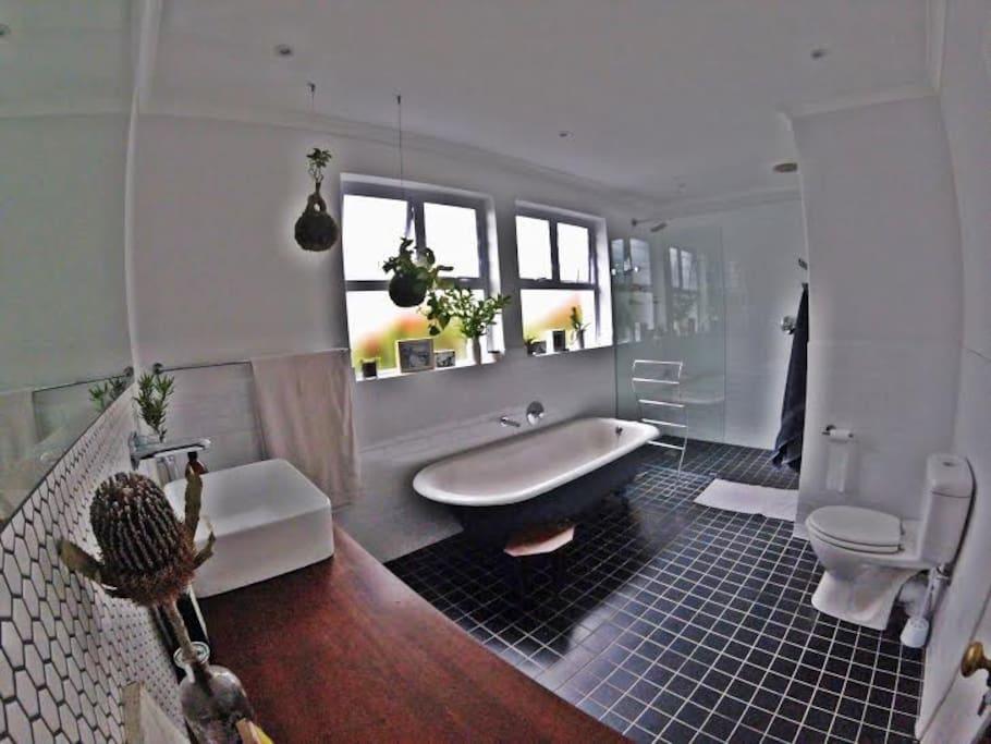 The main bathroom is the highlight of the house