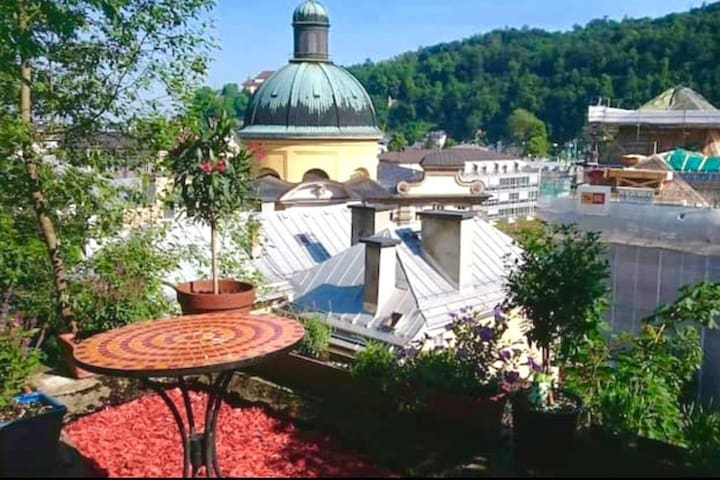 GREAT VIEW! Lovely oldtown apartment with garden