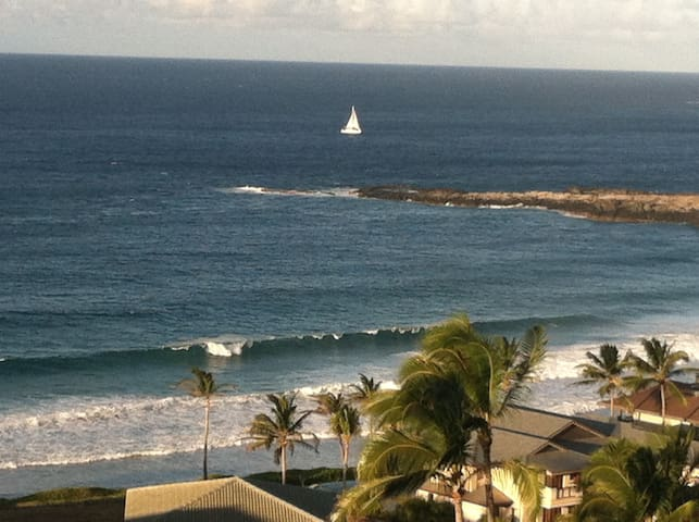 WOW  dropped March/April Price!Best View townhouse