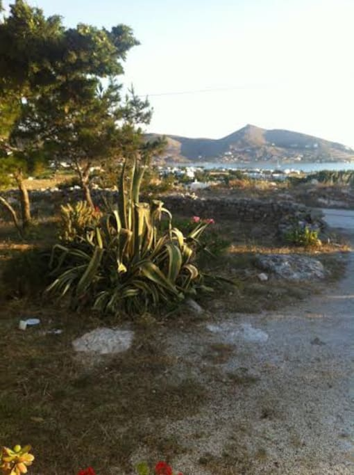 front yard with view of Naousa Bay