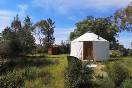 Yurt with beautiful views in rural location