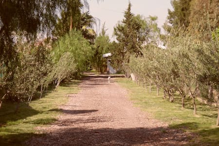 Casa de Campo Corralitos   Disfrutar y Descansar
