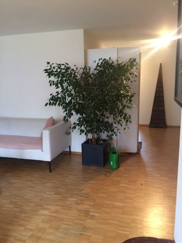 Cosy attic maisonette apartment - Kriens - Appartement