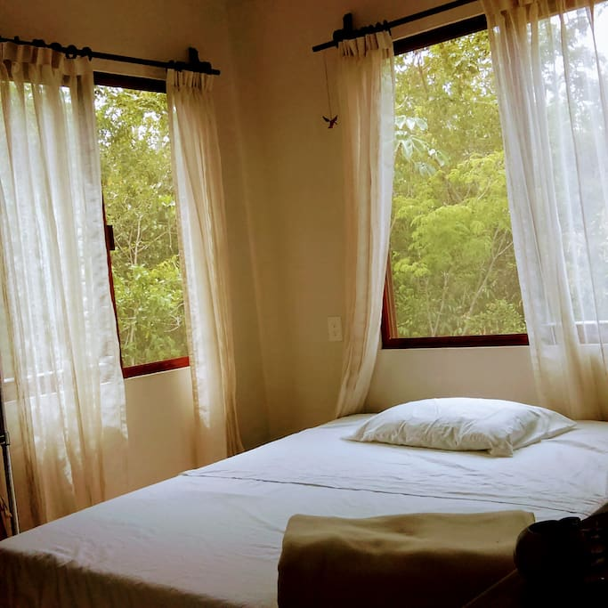 Trees surrounding the apartment, windows located strategically to allow ocean breeze to cross the bedroom