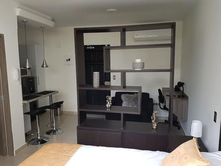 305 Moderno Aparta-Suite En Versalles Tipo Loft