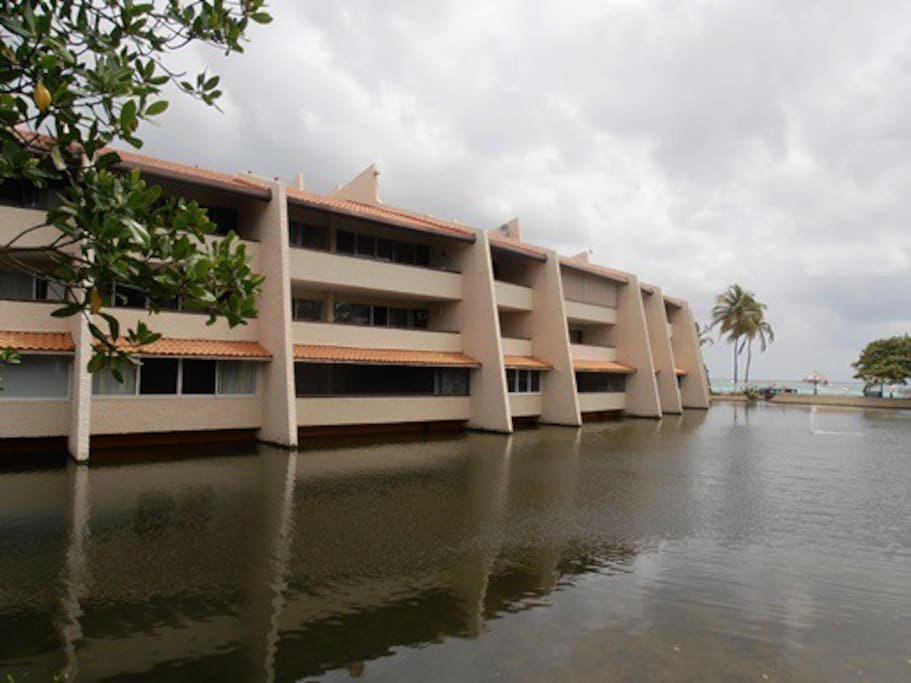 Condos From The Lagoon Side