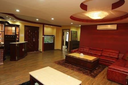 Fabulous / contemp 3BHK PentHouse - Kathmandu - Wohnung