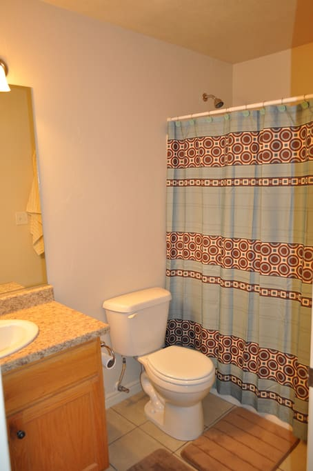 Bathroom - Tub/shower combo I supply hand soap and toilet paper