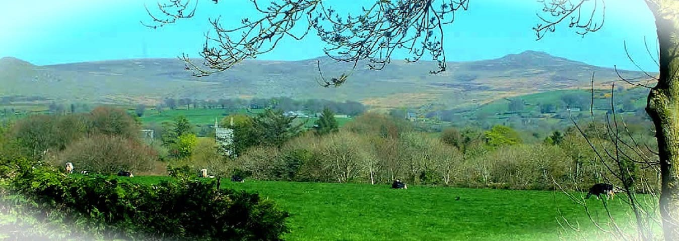 Come, visit and make yourself at home. Welcome to Heathergate Cottage BnB in the heart of Dartmoor.