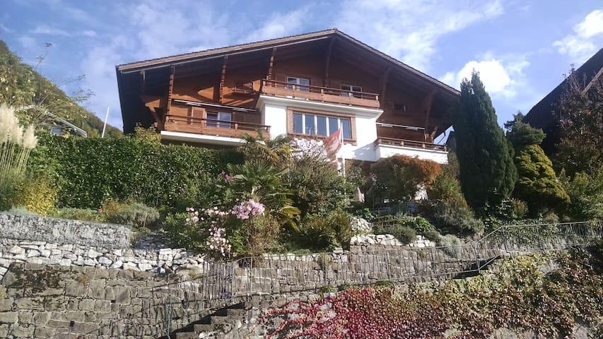 Belsito, Highlight am See zwischen Zürich + Luzern