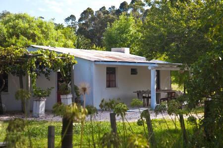 La Garzonita - Haus