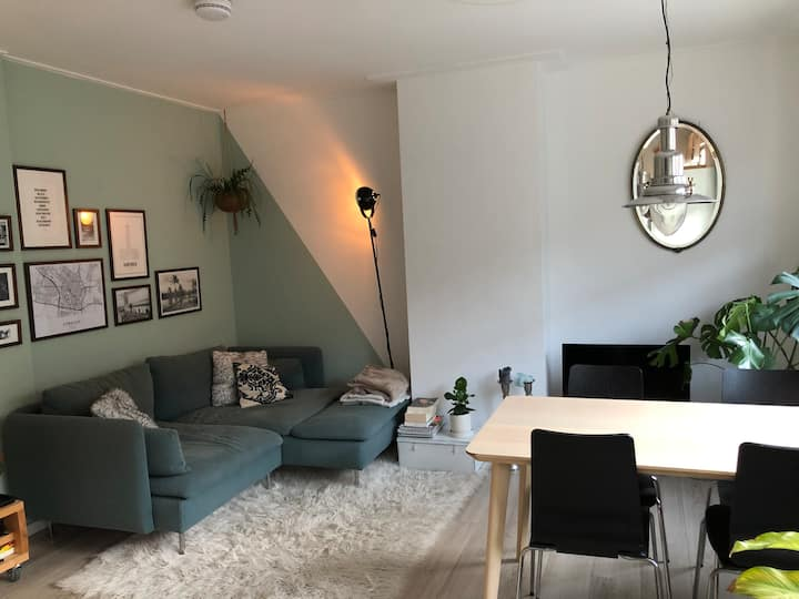 Beautiful renovated apartment near city centre