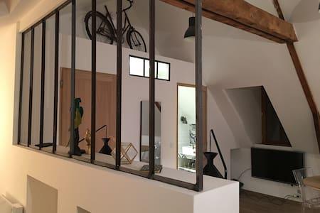 """""""Le 17"""" appartement de charme au centre de Rodez. - Rodez - Apartmen"""