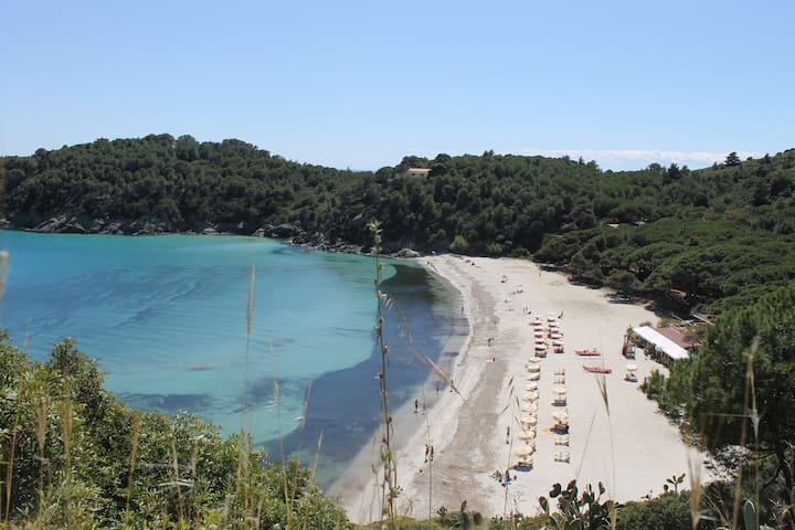 casa azzurra sul mare - Fetovaia - Flat