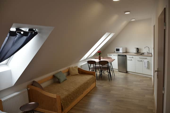 Půdní  apartmán