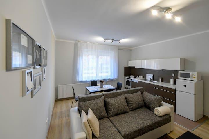 University Avenue apartment.(Egyetem sugárút )