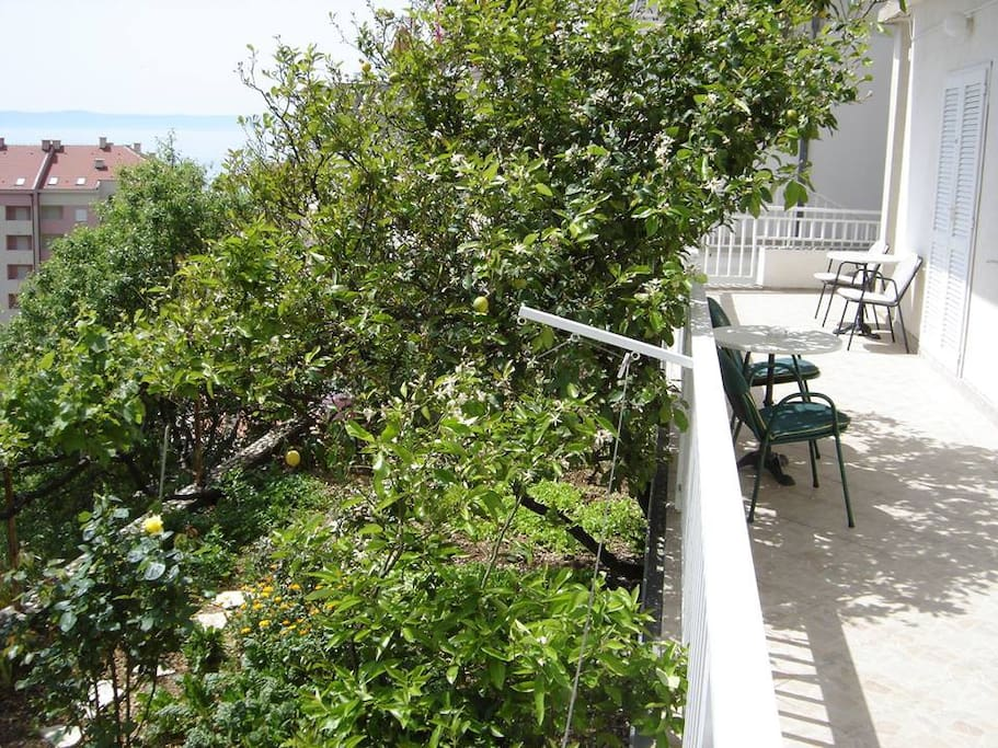 Garden and balcony with sea view :)
