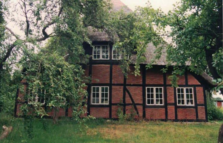 Ferien unter Reet im alten Bauernhaus - Ascheberg - House