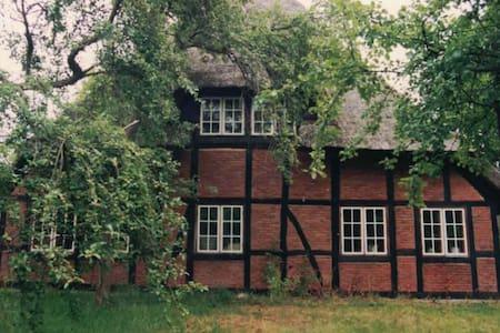 Ferien unter Reet im alten Bauernhaus - Ascheberg - 独立屋