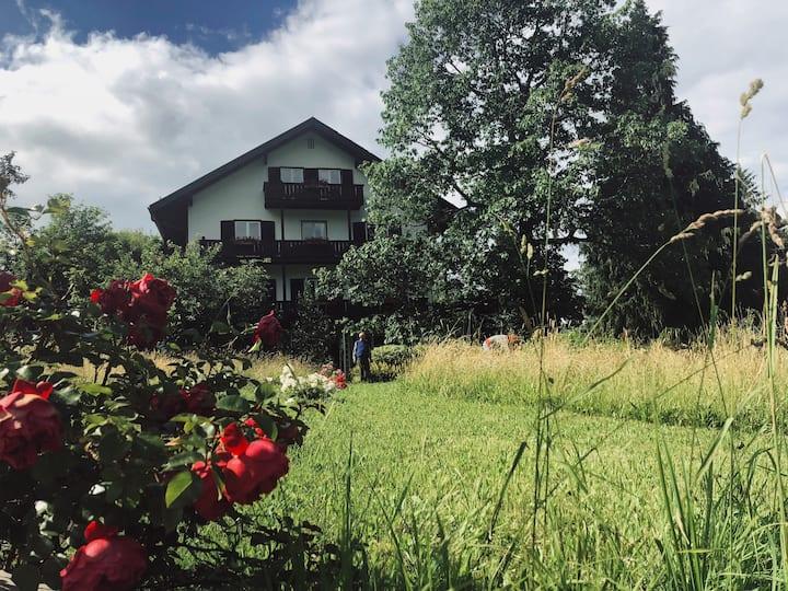 Z 323 Ferienwohnung, Ein Zimmer mit Ost-Berg-Blick