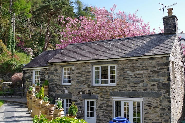 Your holiday  home from home in Snowdonia