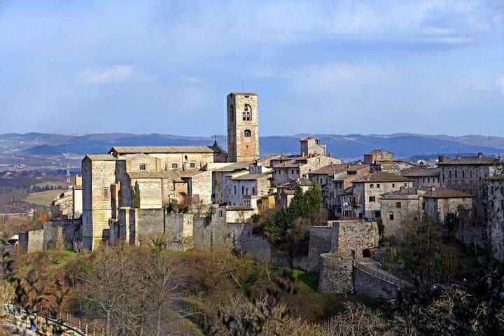 ANTICO APPARTAMENTO IMMERSO NELLA STORIA - Colle di Val d'Elsa - Daire