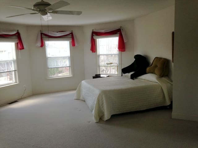 Huge Master Bedroom in quiet area. - Devon