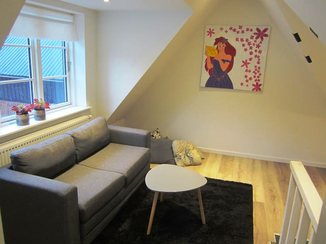 Living room, upstairs, with sleeping sofa