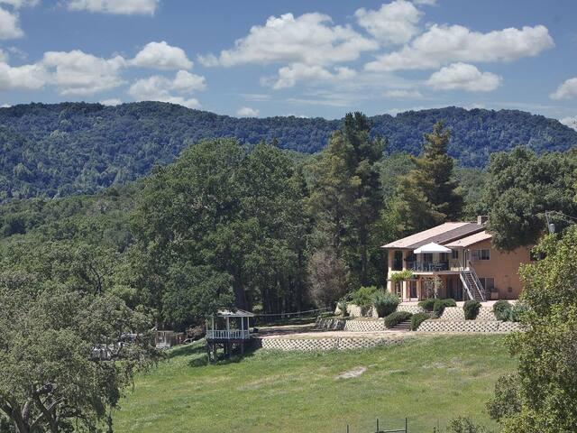 The Hacienda - Sleeps 28+  Beautiful home